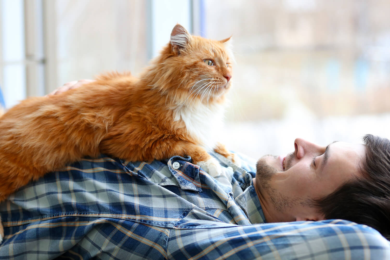 hombre joven tumbado con gato naranja encima